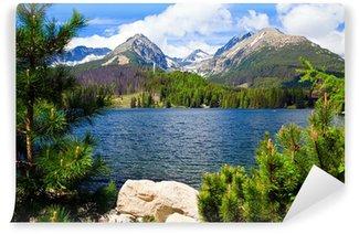 Vinylová Fototapeta Lake na Slovensku