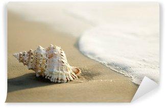 Vinylová Fototapeta Lastura na pláži s vlnami.