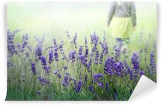 Vinylová Fototapeta Lavendelfeld