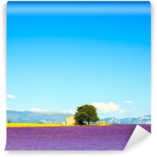 Vinylová Fototapeta Lavender květiny kvetoucí pole, dům a strom. Provence, Franc