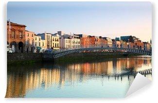 Vinylová Fototapeta Lávka pro pěší v Dublinu