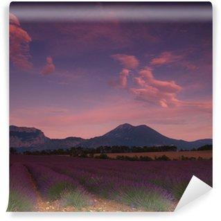 Fototapeta Vinylowa Lawendowego pola
