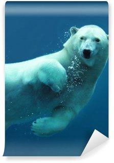 Vinylová Fototapeta Lední medvěd pod vodou close-up