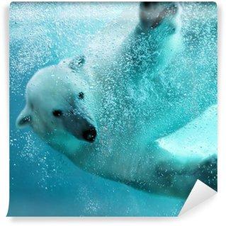 Vinylová Fototapeta Lední medvěd pod vodou útok