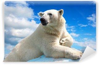 Vinylová Fototapeta Lední medvěd proti obloze