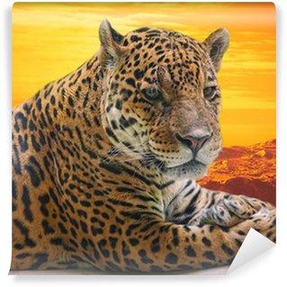 Vinylová Fototapeta Leopard ležet na kládě proti západu slunce