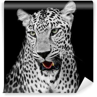 Vinylová Fototapeta Leopard portrét