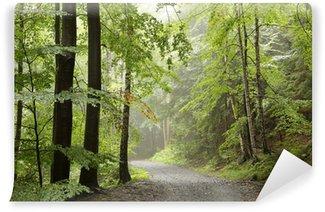 Vinylová Fototapeta Lesní stezka v mlhavém podzimním ranní