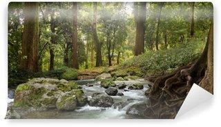 Vinylová Fototapeta Lesní vodopád