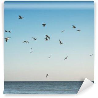 Vinylová Fototapeta Létání seaulls nad klidné moře
