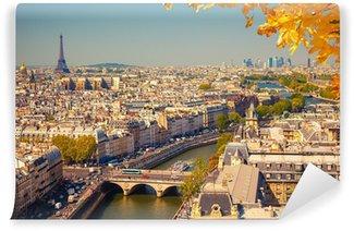Vinylová Fototapeta Letecký pohled na Paříž.