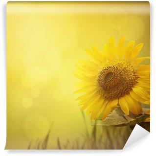 Vinylová Fototapeta Letní slunečnice na pozadí