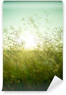 Vinylová Fototapeta Letní suchá tráva