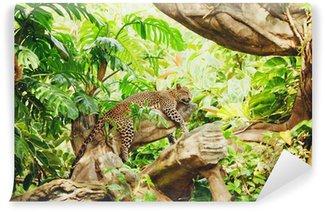 Vinylová Fototapeta Ležící (spaní), leopard na větvi stromu