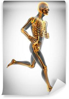 Vinylová Fototapeta Lidské kosti rentgen skenování obrazu