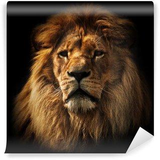 Vinylová Fototapeta Lion portrét s bohatou hřívou na černém