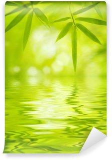 Vinylová Fototapeta Listy bambusu