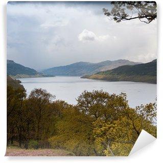 Vinylová Fototapeta Loch Lomond ve Skotsku