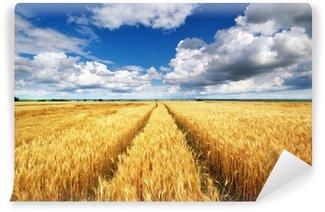 Vinylová Fototapeta Louka pšenice