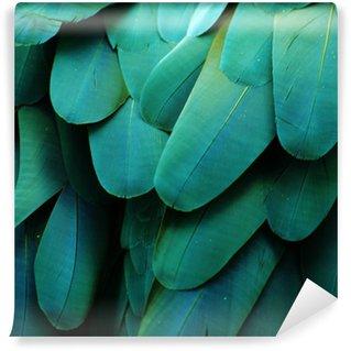 Vinylová Fototapeta Macaw Feathers (tyrkysová)