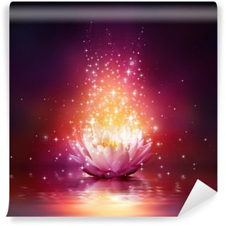 Vinylová Fototapeta Magie květina na vodě