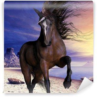 Vinylová Fototapeta Mahogony Bay Unicorn