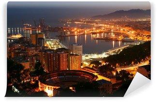 Vinylová Fototapeta Málaga, noční panoramatický výhled