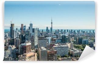 Vinylová Fototapeta Malebný pohled na centrální Toronto