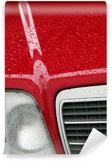 Vinylová Fototapeta MB W124 hoch