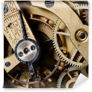 Vinylová Fototapeta Mechanismus staré hodinky