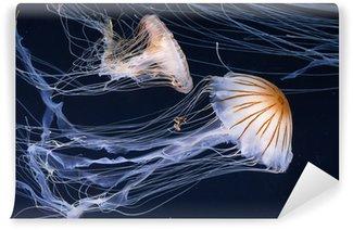 Vinylová Fototapeta Medúzy plavání v oceánu
