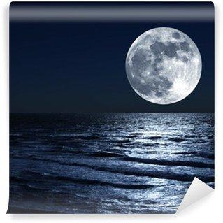Vinylová Fototapeta Měsíc nad mořem