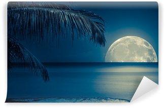 Vinylová Fototapeta Měsíc odráží na vodě tropické pláži