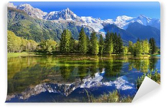 Vinylová Fototapeta Městský park v Chamonix