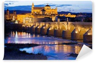 Vinylová Fototapeta Mezquita a Římský most v Córdobě