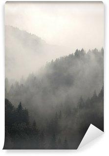 Fototapeta Winylowa Mglisty las