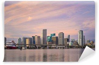 Vinylová Fototapeta Miami, Florida, USA Skyline
