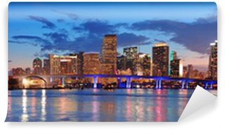 Vinylová Fototapeta Miami night scene