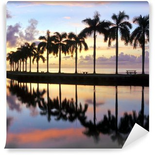 Vinylová Fototapeta Miami Sunrise