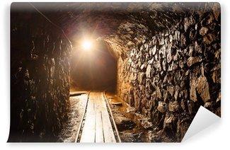 Vinylová Fototapeta Mine tunel s cestou - historické zlato, stříbro, měď důl.