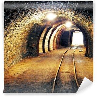 Vinylová Fototapeta Mine zlato podzemní tunel železnice