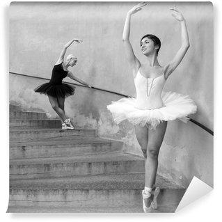 Vinylová Fototapeta Mladé krásné tanečnice podél schodů. Černý a bílý obraz.