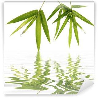 Vinylová Fototapeta Mladé zelené listy bambusu