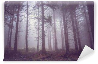 Vinylová Fototapeta Mlha v strašidelném lese v létě