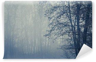 Vinylová Fototapeta Mlžný les se stromy v popředí, copy space