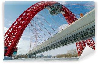 Vinylová Fototapeta Moderní pozastavena most v Moskvě (Zhivopisny most)