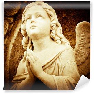 Vinylová Fototapeta Modlit se anděl v sépie odstínech