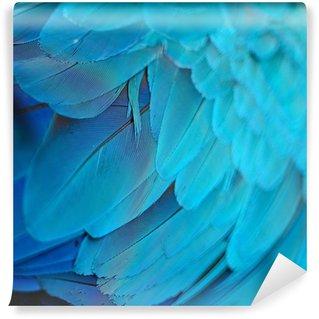 Vinylová Fototapeta Modrá a zlatá papoušek peří