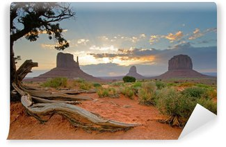 Vinylová Fototapeta Monument Valley, Utah, USA