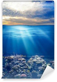 Vinylová Fototapeta Moře nebo oceánu podmořský život při západu slunce obloha